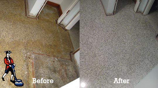 Terrazzo Restoration Diy Terrazzo Flooring Restoration